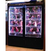 Armoire de maturation pour viande, 1 porte et côtés vitrés, 0.5 kW